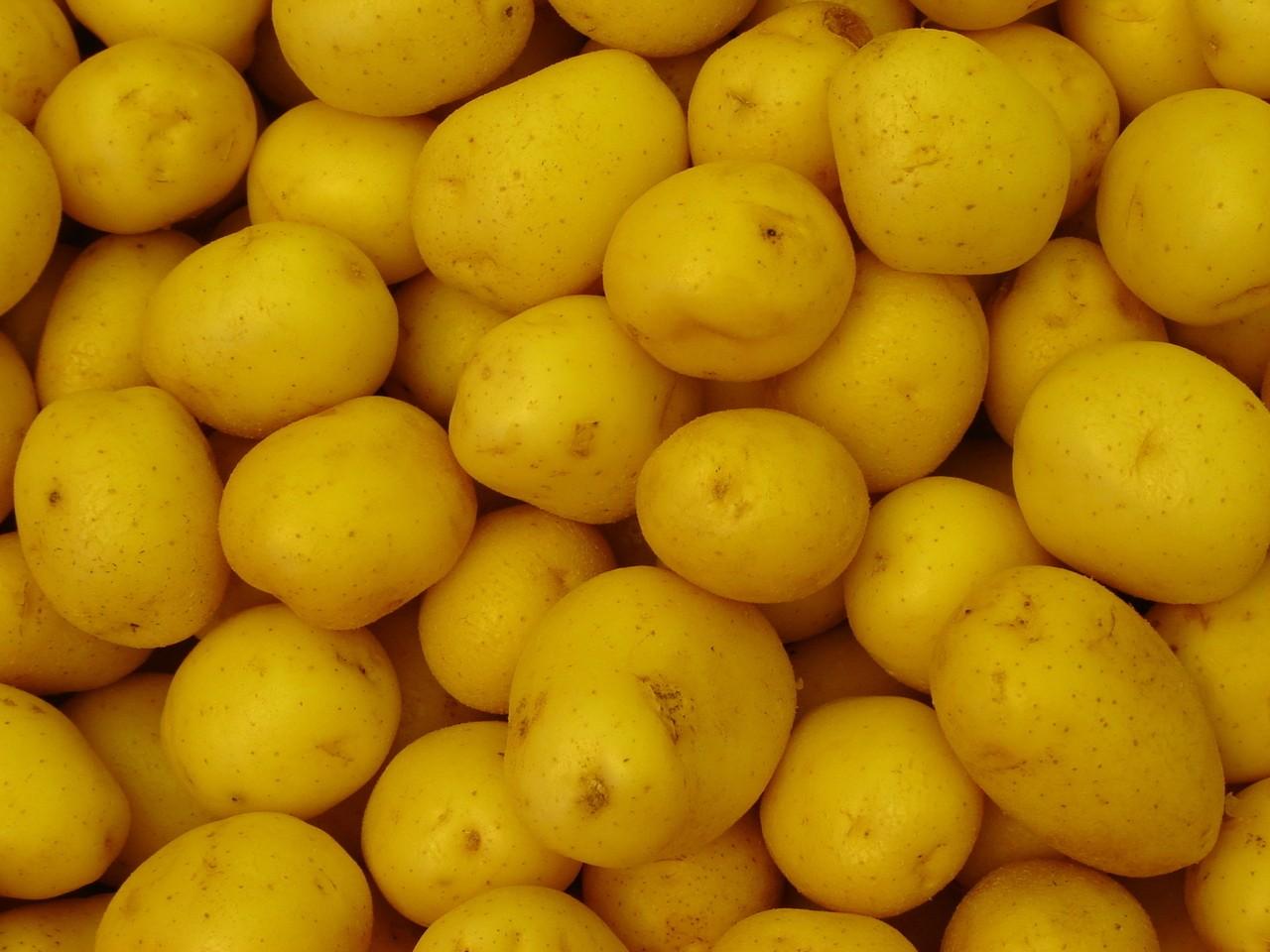 Makarony, ziemniaki, kasza – a może coś innego