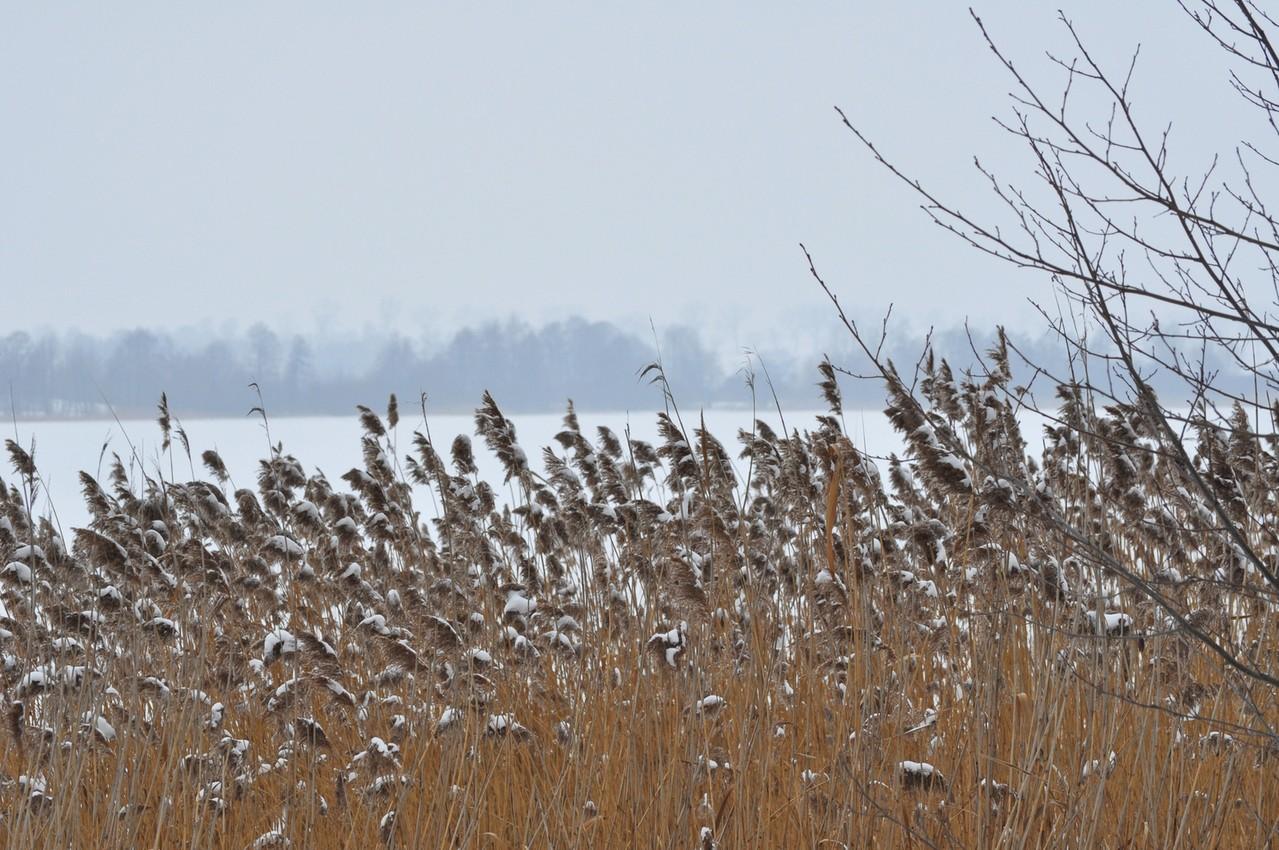 Nie tylko zima wpływa na nasze złe samopoczucie